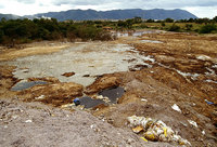 Toxic land due to chemicals dumped by tanneries
