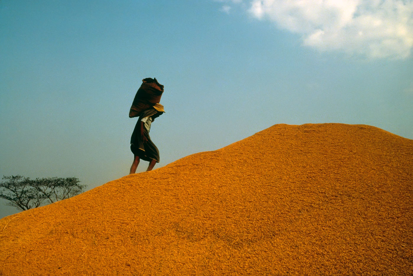 A mountain of rice in Burma : BUSINESS & INDUSTRY : Viviane Moos |  Documentary Photographer
