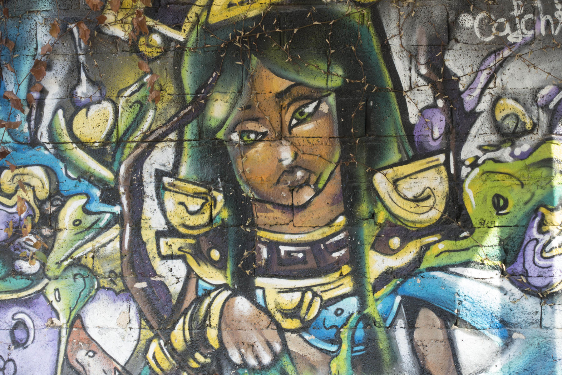 Green-eyed Mayan goddess on a park wall : PUERTO VALLARTA - Wall Art & Bicycle Tour : Viviane Moos |  Documentary Photographer