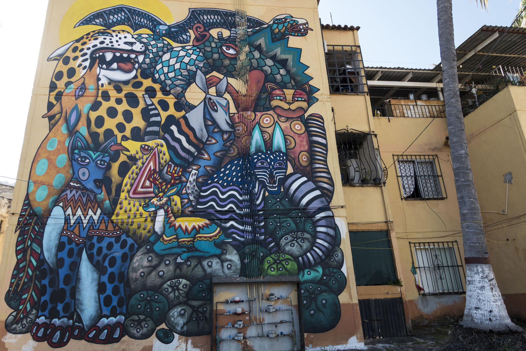 Colorful, imaginatively rendered animals , tigers, bats, snakes and others painted on a four story residential building. : PUERTO VALLARTA - Wall Art & Bicycle Tour : Viviane Moos |  Documentary Photographer