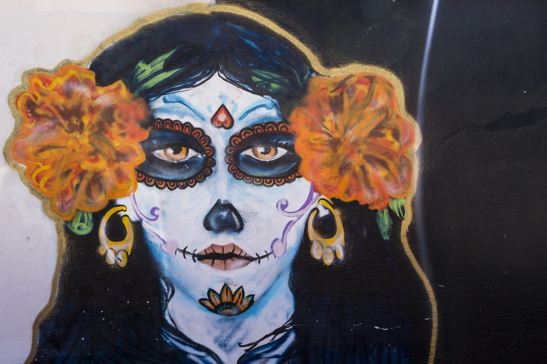 La CATRINA, symbol of The Day of the Dead on the wall of the town cemetery.  : PUERTO VALLARTA - Wall Art & Bicycle Tour : Viviane Moos |  Documentary Photographer